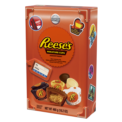 REESE'S Peanut Butter Cup Miniatures Assortment, World Traveler Collection, 16.2 oz.