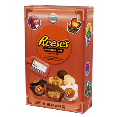REESE'S Peanut Butter Cup Miniatures Assortment, World Traveler Collection, 16.2 oz.