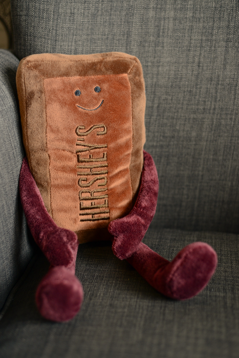 Image of HERSHEY'S Chocolate Plush Toy Packaging