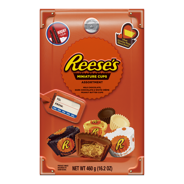 Image of REESE'S Peanut Butter Cup Miniatures Assortment, World Traveler Collection, 16.2 oz., 16.2 oz. bag Packaging