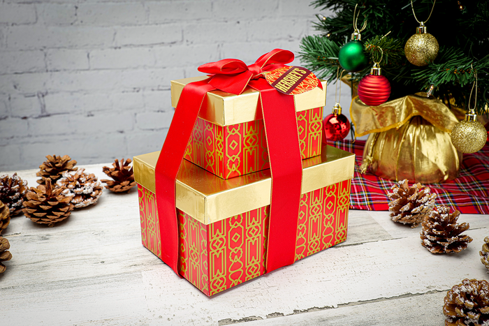 Image of HERSHEY'S Two-Box Holiday Gift Tower Packaging